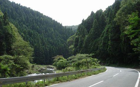 入遠野川沿いに進みます・・・