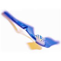 歯の掃除コース