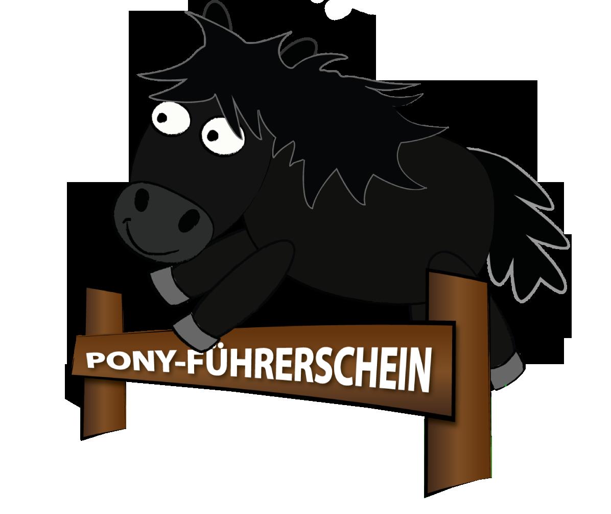 Neuer Kurs in unserer Ponyschule
