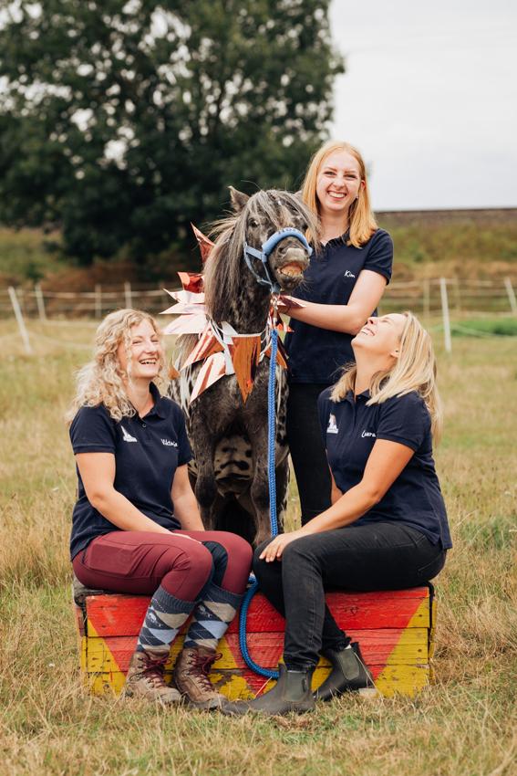Neue Fotos für die Ponyschule