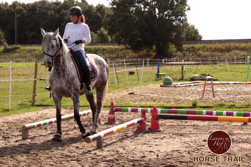 Horse Trail im September