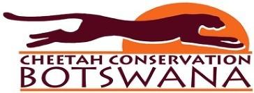 Cheetah Conservation Botswana
