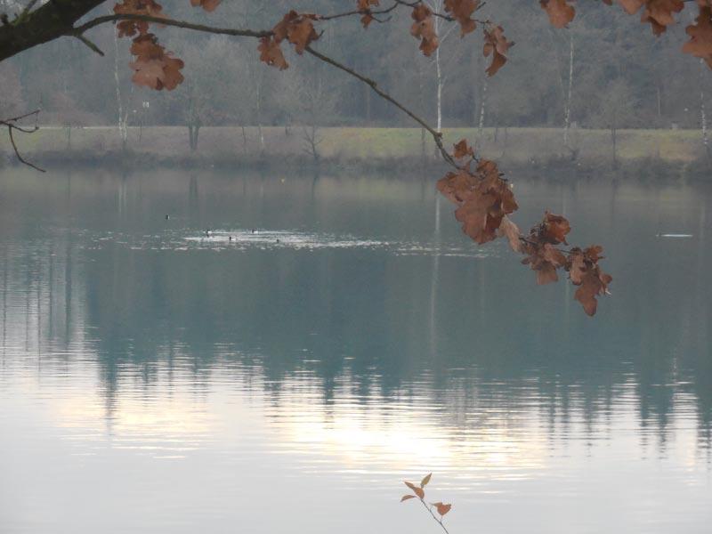 der Dankern-See im Herbst