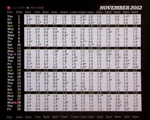 2012年11月バリ島タイドチャート