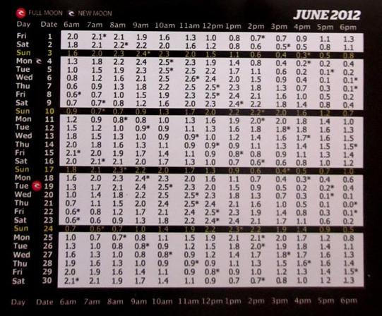 2012年6月バリ島タイドチャート