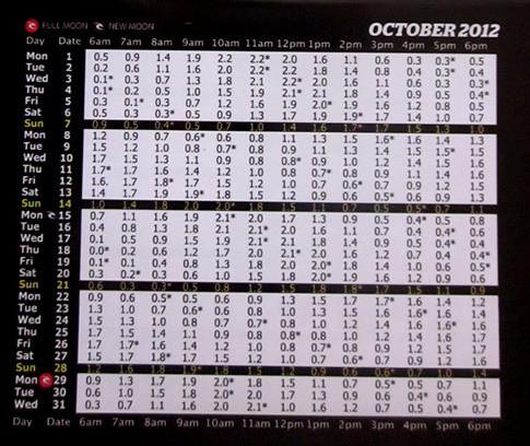 2012年10月バリ島タイドチャート