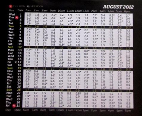 2012年8月バリ島タイドチャート