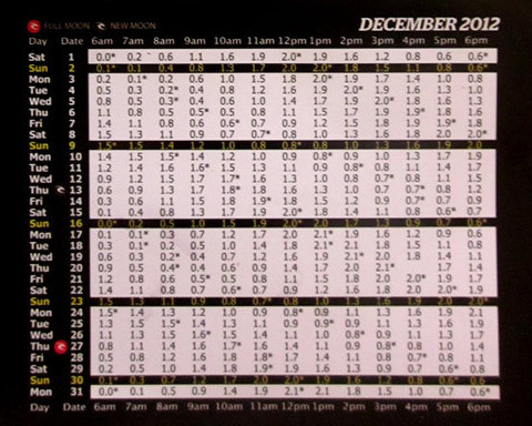 201212月バリ島タイドチャート