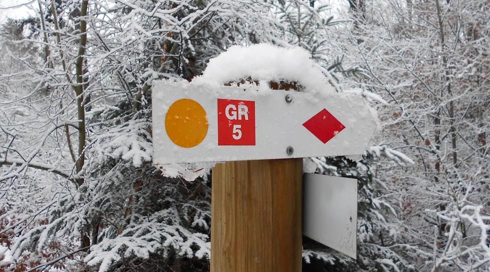GR5 - GR534