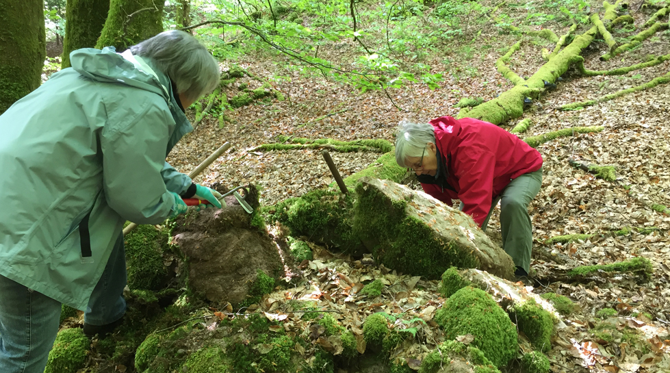 Dégagement de pierres taillées secteur Vieux-Chateaux,avec l' A.R.A.P.S.