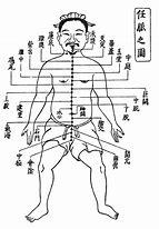 鍼灸の経絡経穴