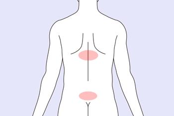 眩暈を鍼灸で施術する際のツボエリア