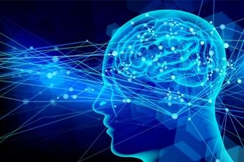 脳からの内因性オピオイドの放出