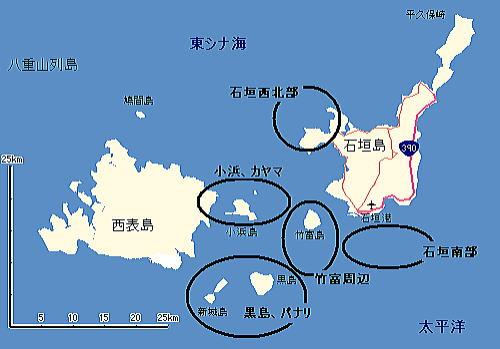 八重山のダイビングポイントご案内!石垣島から少人数でボートダイビングdayトリップ!