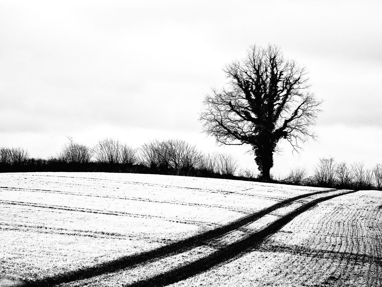 Axel Lange - Winterlandschaft