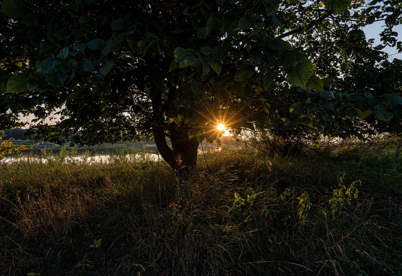 "F 098 - Elke Schots ""Herbstabend"""