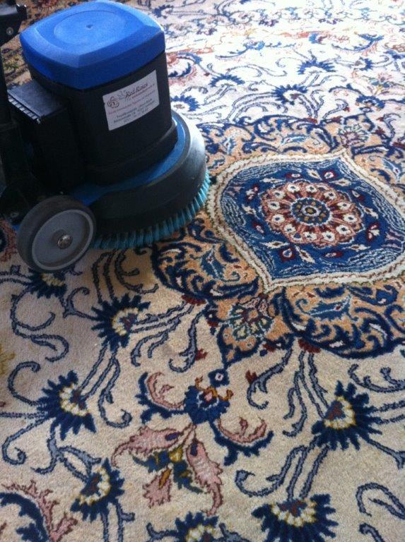 teppichreinigung bio clean roses textilkosmetik teppichreinigung bio spezialreinigungen stuttgart. Black Bedroom Furniture Sets. Home Design Ideas