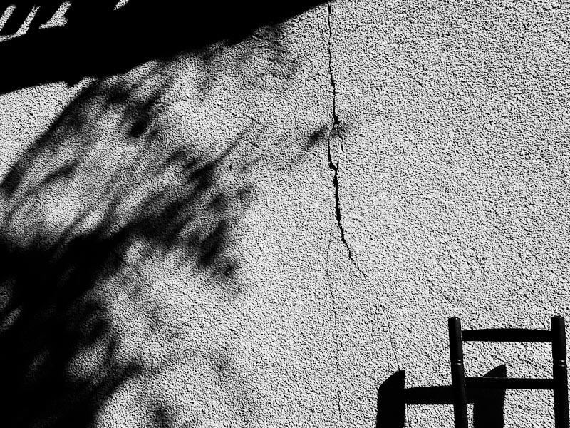 Lézarder au soleil