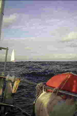 mitten auf dem Atlantik