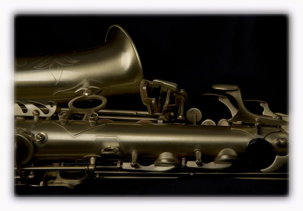 SW (Santaluna Winds), Alto sax, Vintage Gold Satin
