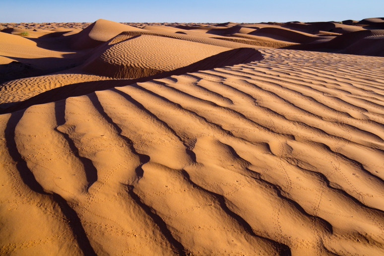 Sacharos smėlynai Tunise rytas