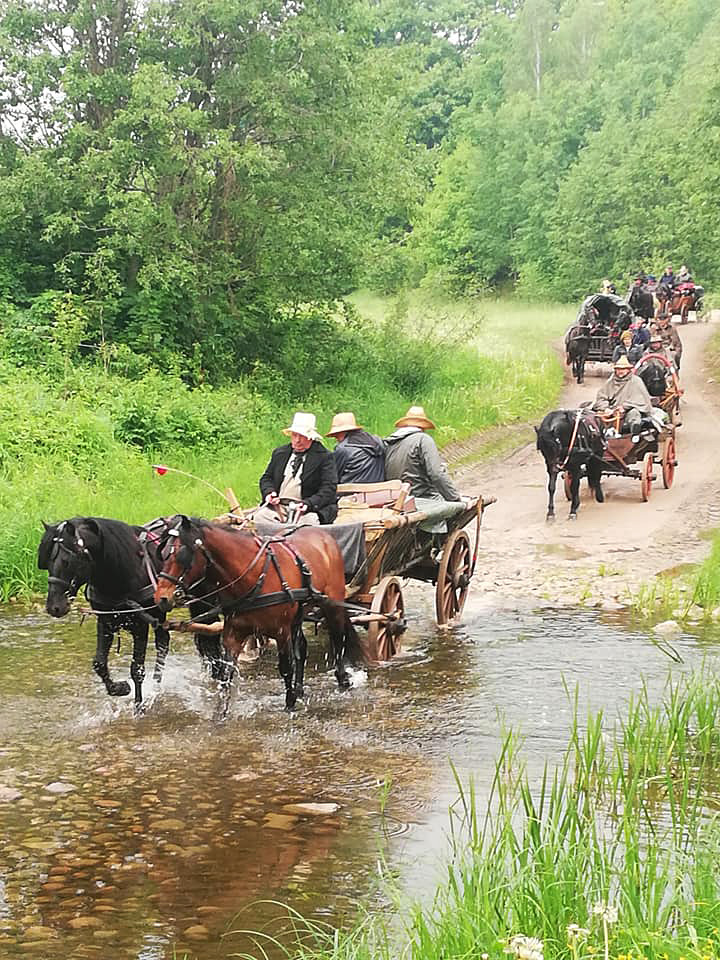 Žemaitukai bėga per brastą / Foto: Dovilė Bagvilaitė