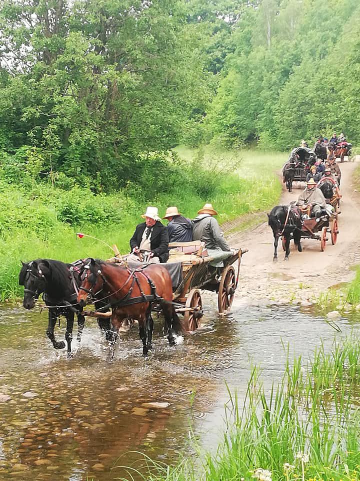 Žemaitukai traukia vežimus per brastą