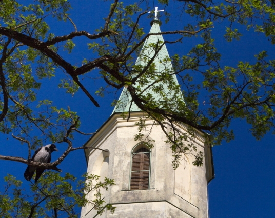 Šv. Katerinos bažnyčios bokštas Kuldygoje / Foto: Kristina Stalnionytė