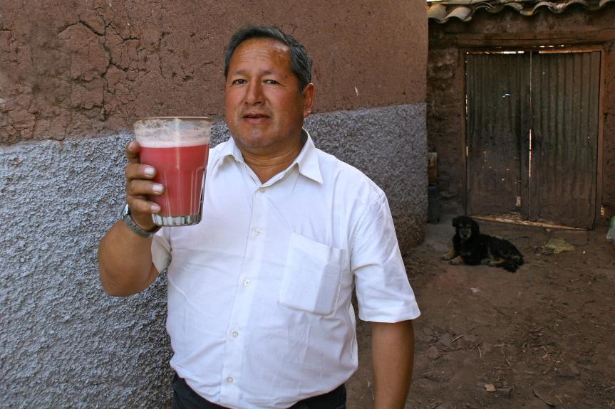 Čičia - tai kukurūzų alus chicha morada