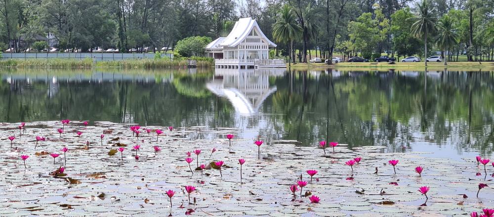 Į kitą lagūnos krantą galima nueiti arba nuplaukti laivu ar keltu