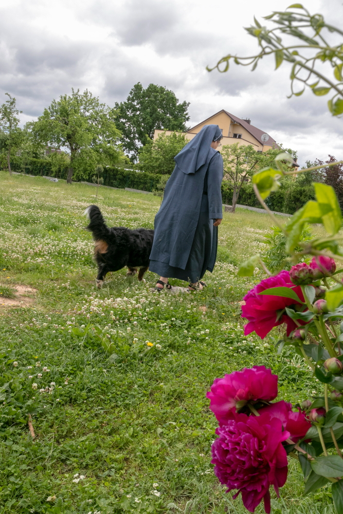 Meška su Dominyka veda į vienuolyno daržą