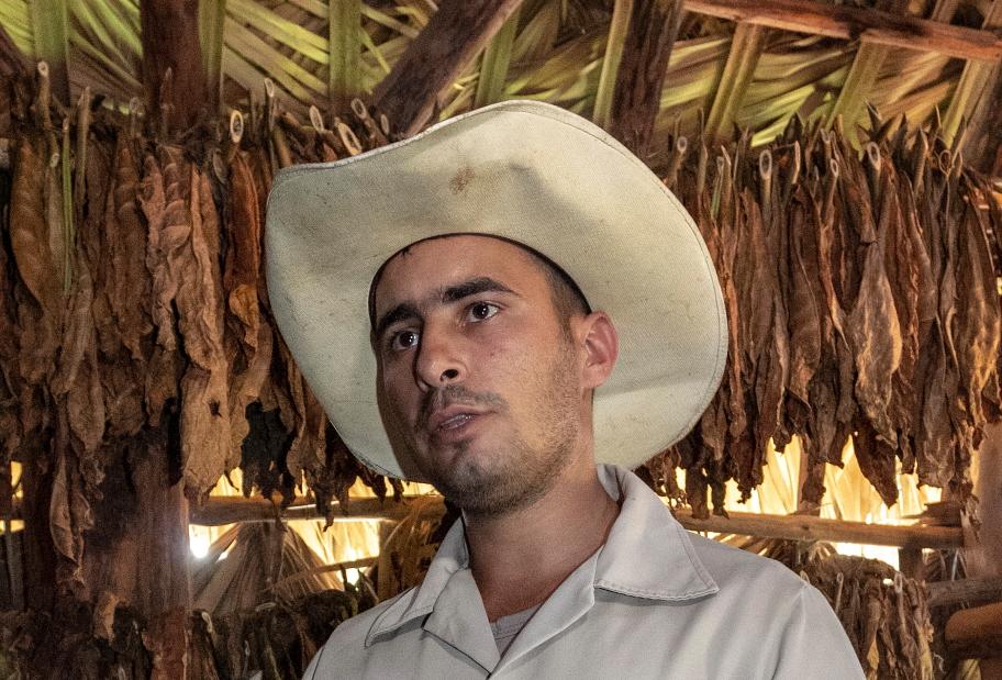 Tabako lapų rinkėjas Vinjaleso slėnyje