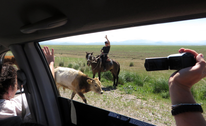 Piemuo stepėse tarp Kirgistano ir Kazachstano