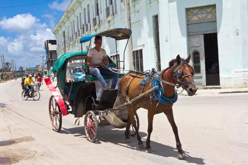 Sagua La Grandės transportas - arklių traukiami vežimai - Kuba