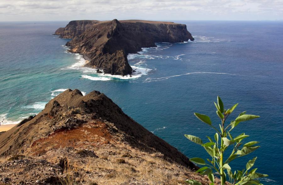 Porto Santo salos pakraštys / Foto: Kristina Stalnionytė