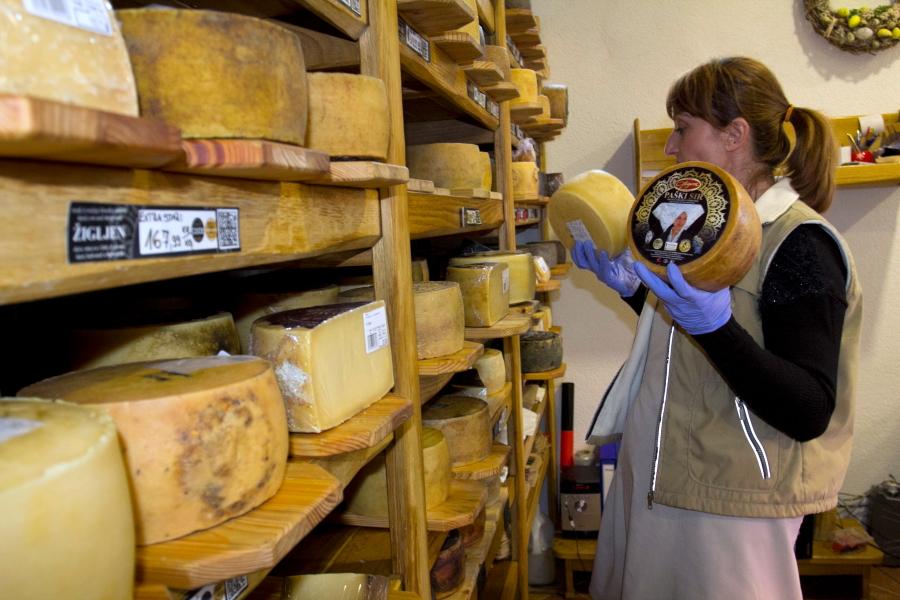 Kolano sūrinėje noksta Pago sūriai / Foto: Kristina Stalnionytė