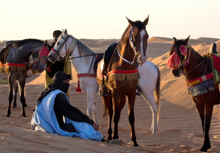 Beduinai su žirgais Ksar Gilano oazėje Tunise Sacharos dykumoje smėlynuose