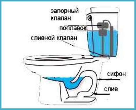 унитаз не срабатывает поплавок в бачке унитаза