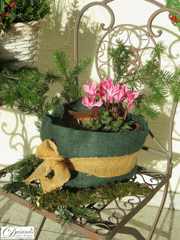 Winterdeko im Garten: Zyplame im Topf verpackt in Jutte mit Schleife