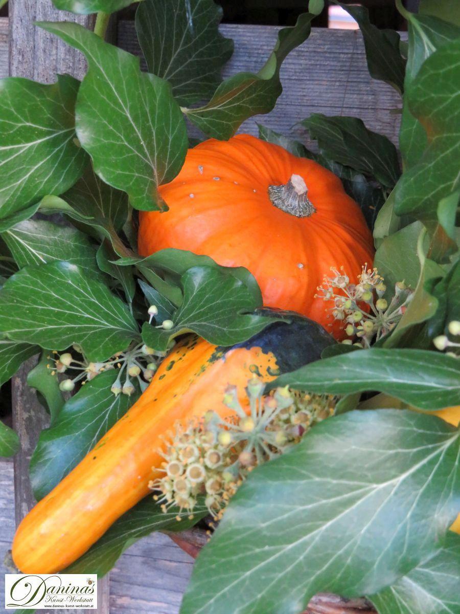 Farbenfrohe Herbstdeko Idee mit Efeu und orangen Kürbissen