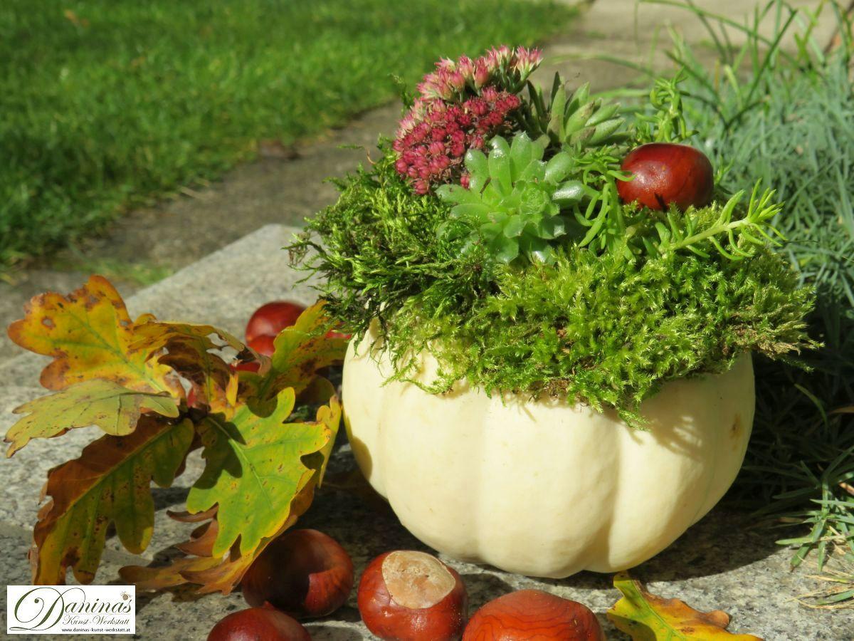Herbstdeko mit Kürbissen - 3 schöne Ideen