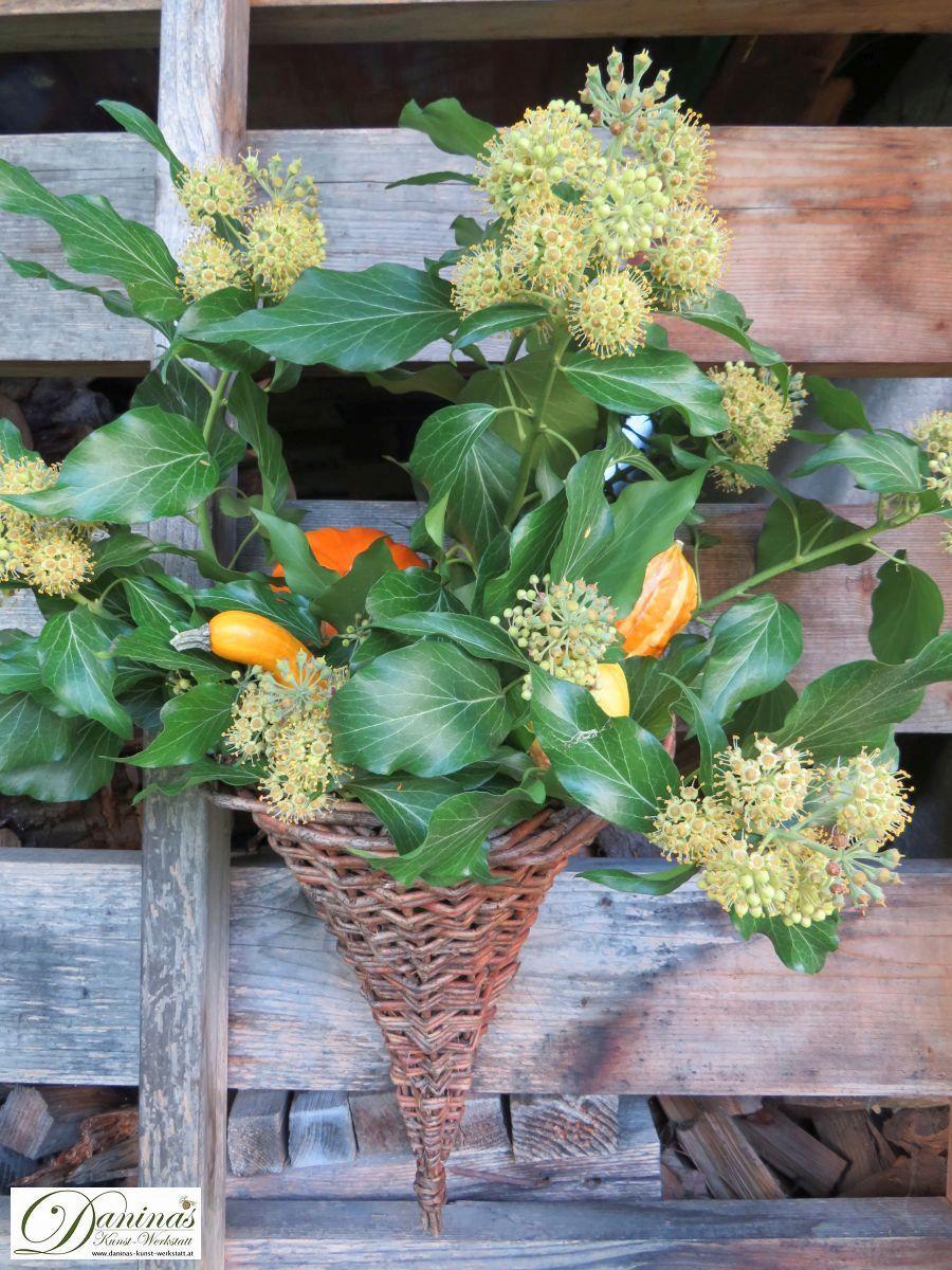 Herbstliche Kürbisdeko für draussen: Weiden-Füllhorn mit bunten Kürbissen und blühendem Efeu