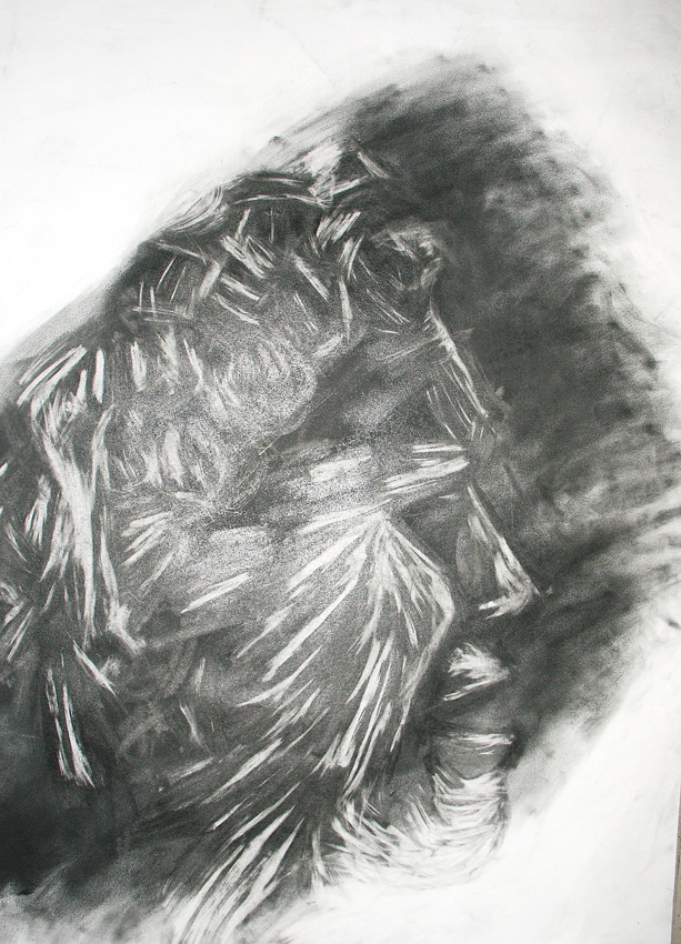 """""""Sculpture IV"""", Charcoal on paper, 2006"""