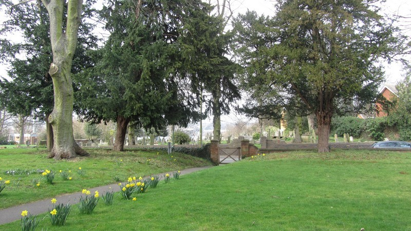 View of the graveyard from the church
