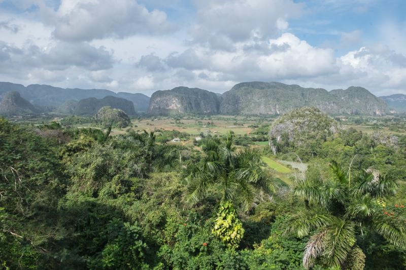 Paysages de mogotes, ou reliefs karstiques sur lesquels une végétation tropicale se développe