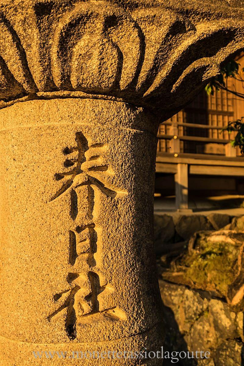 A Nara lanterne de pierre