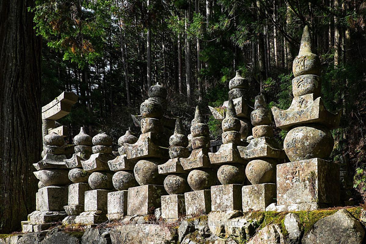 A Koyasan  au Okono in  (cimetière de moines)