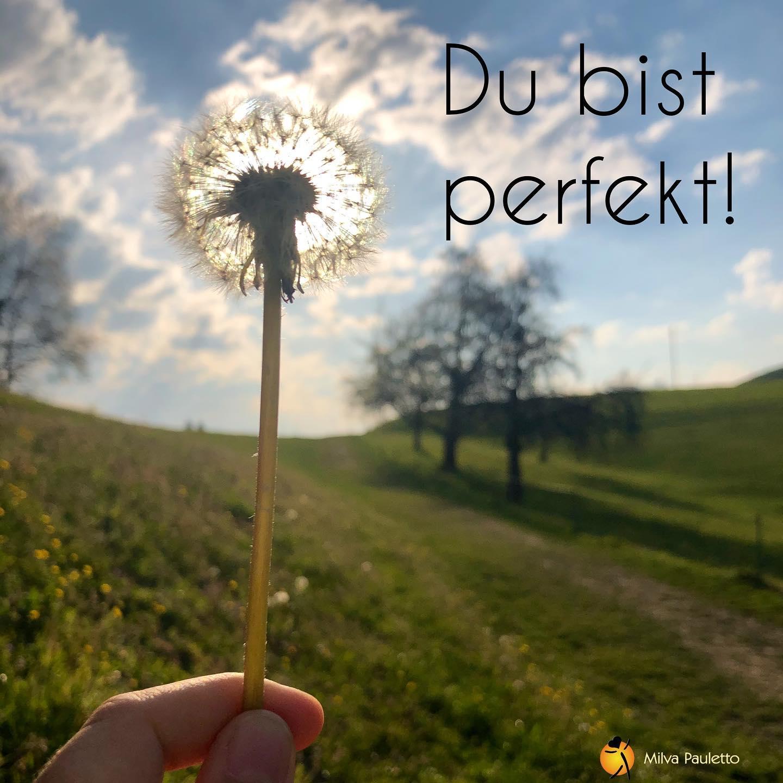 Du bist perfekt!