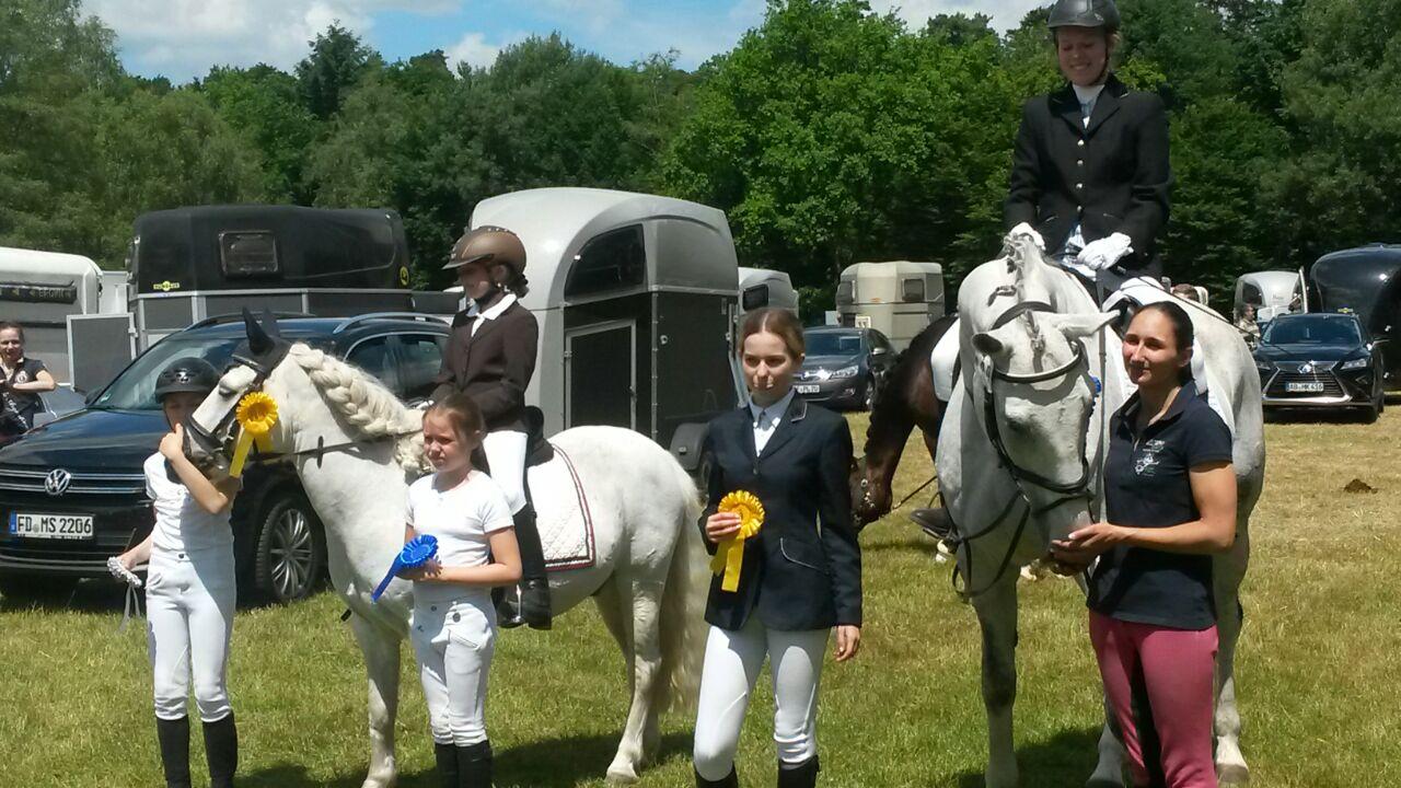 Reiterwettbewerb ohne Galopp
