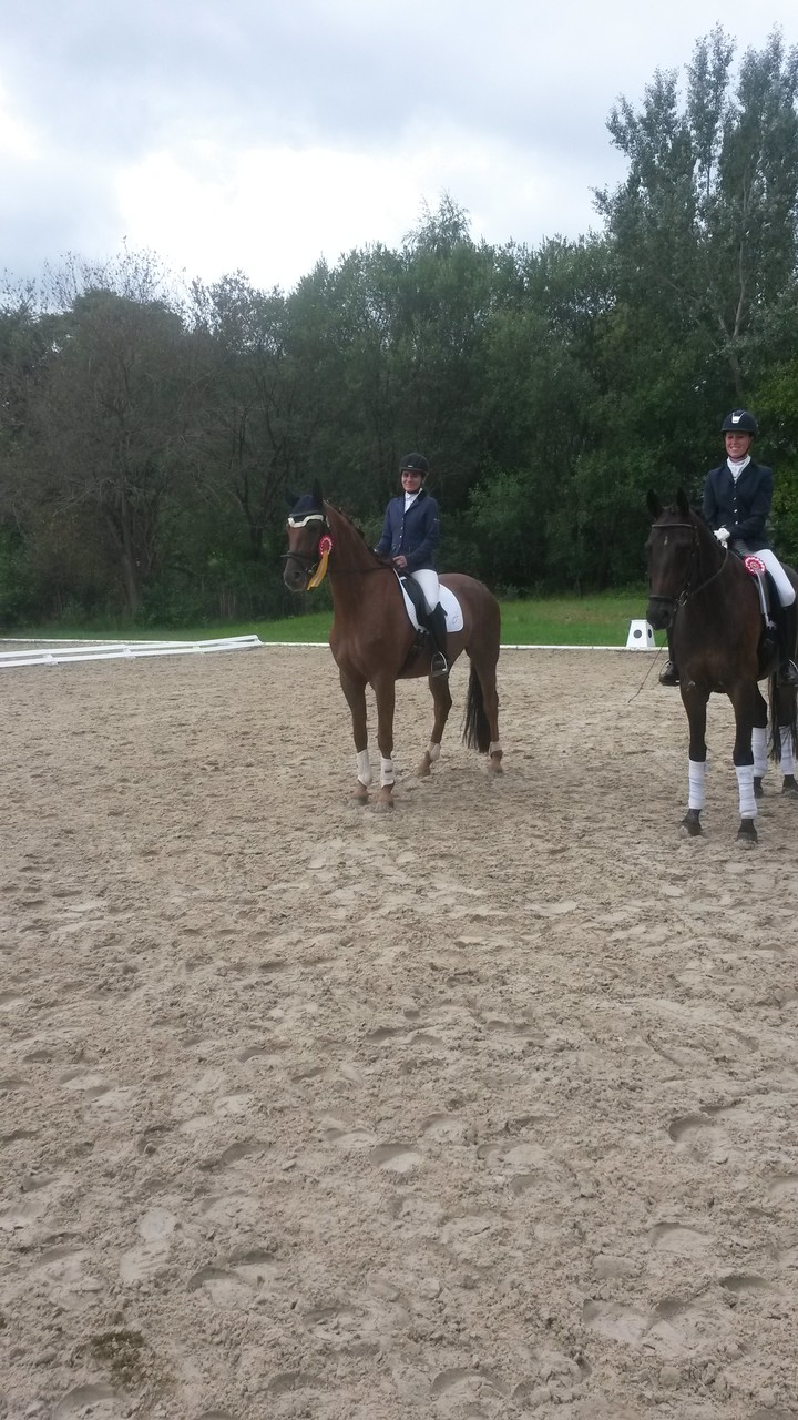 Sieger Dressurpferde A in Traisa 2014